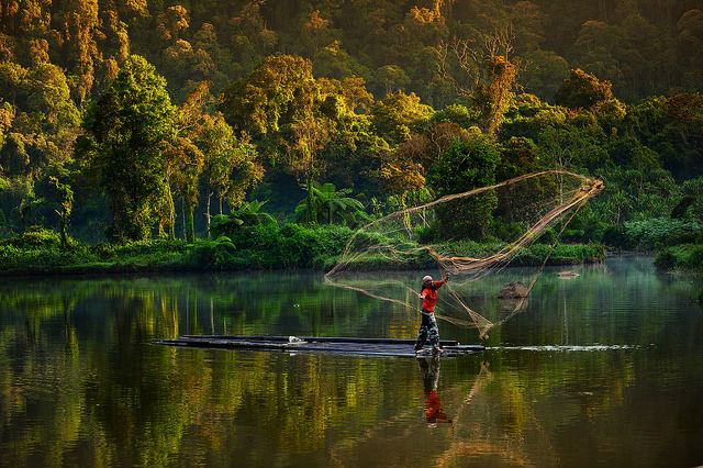 A Man Fishing with Traditional Net, Situ Gunung, West Java, Indonesia
