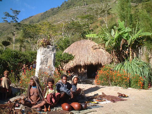 Tourist Attraction: Tribal Villages, Baliem Valley, Papua, Indonesia