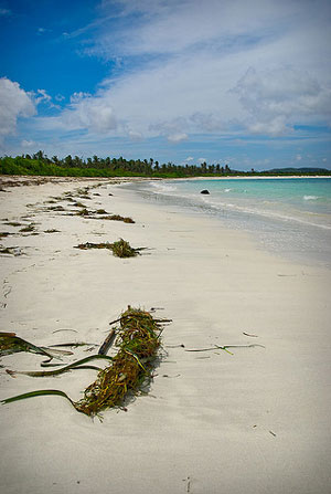 White Sand Beaches at Lombok, Indonesia