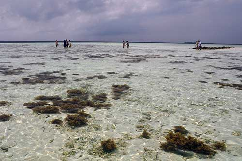 Clear sea at Karimunjawa, Java, Indonesia