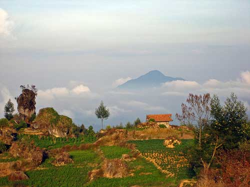 House on hilly villages, Dieng Plateau, Java, Indonesia