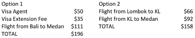 Options to extend my Indonesian Visa: Agent vs Flying in and Out