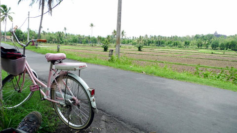 Solo Traveler Cycling @ Borobudur, Indonesia