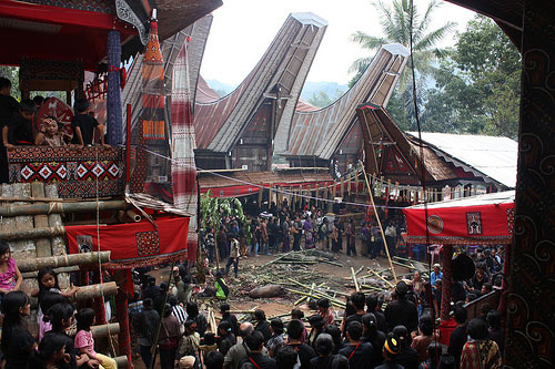 Tana Toraja, South Sulawesi, Indonesia - Salu Funeral